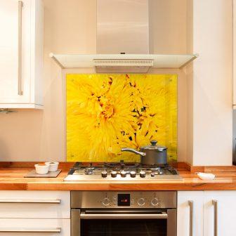 Yellow Chrysanthemum kitchen splashback